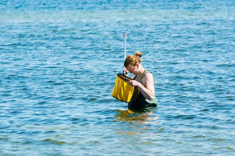 Женский зрачок в воде стоковые изображения rf
