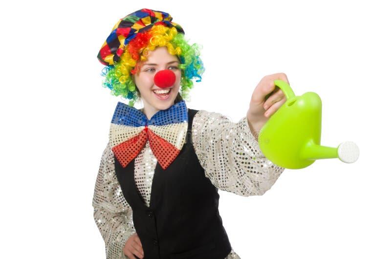 Женский клоун при моча чонсервная банка изолированная на белизне стоковое фото rf