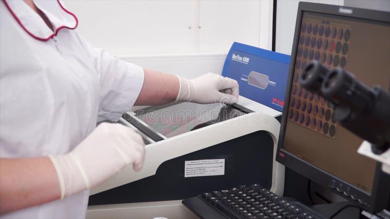 Женский медицинский или научный исследователь используя пробирки на лаборатории зажим Женский ученый анализирует жидкость в стоковые фотографии rf