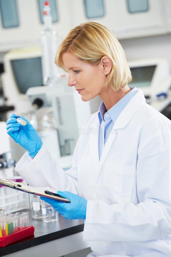 Женский научный работник работая в лаборатории стоковое фото