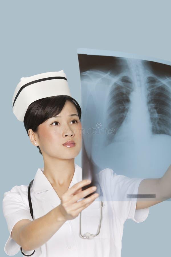 Женский доктор анализируя отчет о рентгеновского снимка над светом - голубой предпосылкой стоковая фотография