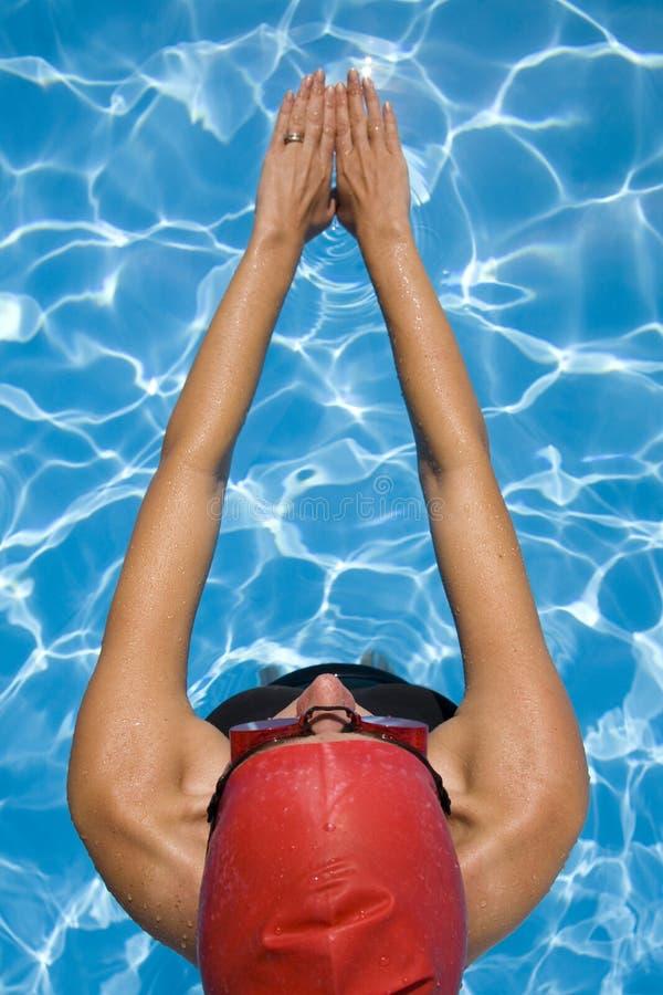 женский пловец стоковые изображения rf