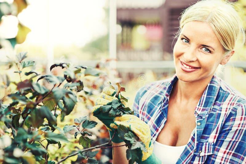 Женский садовник стоковое изображение rf