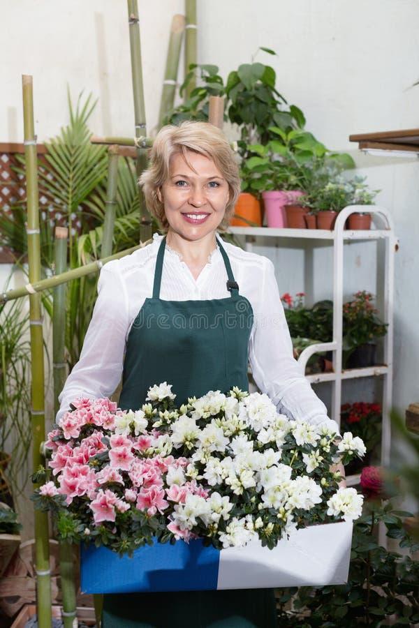 Женский флорист нося рисберму и счастливо стоя среди flowe стоковые фотографии rf