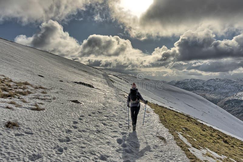 Женский hiker спуская снег покрыл Helvellyn стоковые фотографии rf