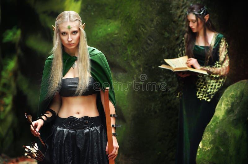 2 женских эльфа идя в древесины стоковые фото