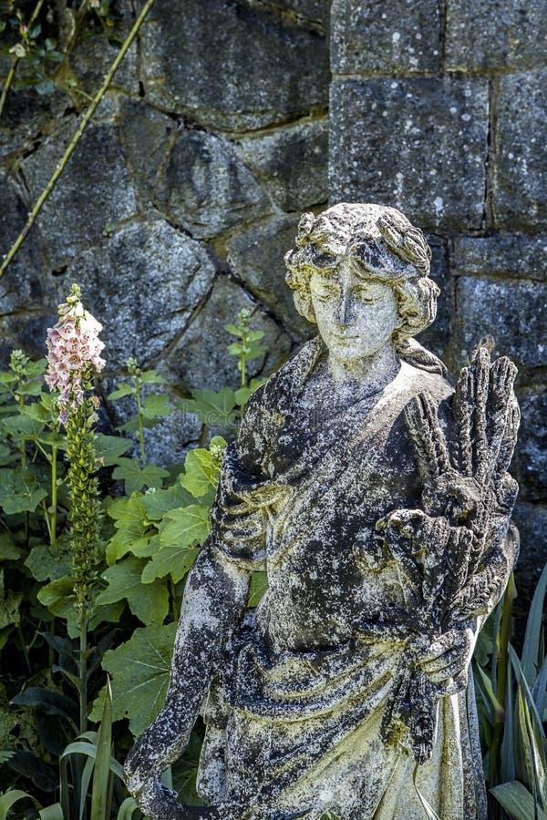 Женское положение в саде стоковые изображения rf