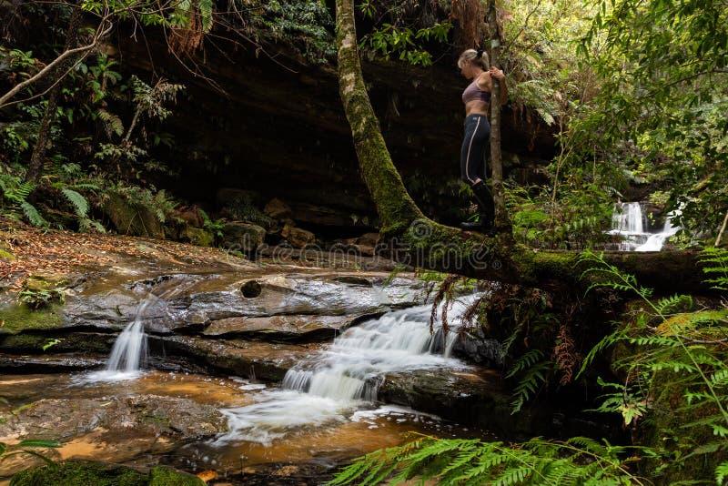 Женское положение на водопадах ствола дерева исследуя в сочной глуши стоковая фотография rf