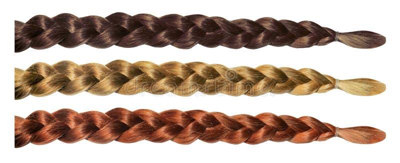 Женской набор отрезка провода парика волос изолированный косичкой Белокурые каштановые волосы брюнета стоковые изображения rf