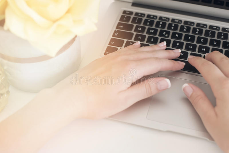Женственная концепция рабочего места Независимое место для работы с компьтер-книжкой, цветками, руками женщины с ногтями Деятельн стоковые фото