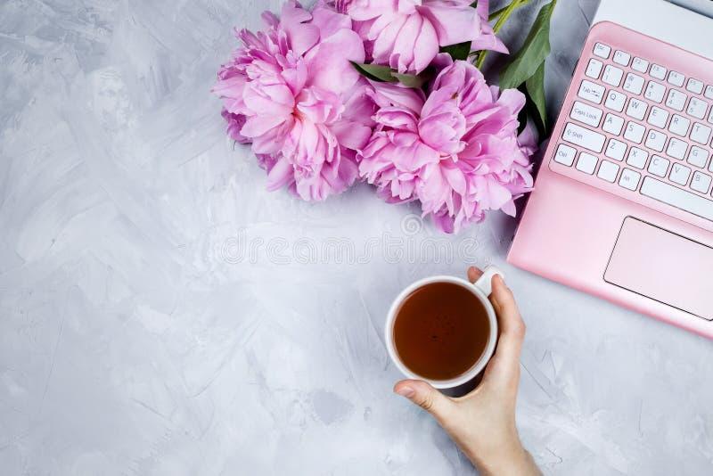 Женственный модель-макет дела с розовой компьтер-книжкой, букет пионов и ` s женщины вручают держать чашку стоковая фотография rf