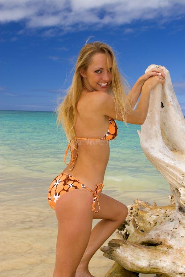 женщина бикини пляжа тропическая стоковое фото rf