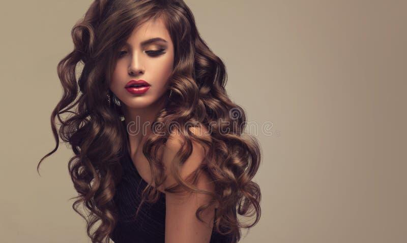Женщина Брайна с волосами с объемистым, сияющим и курчавым стилем причёсок Frizzy волосы стоковые фотографии rf