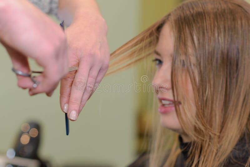 Женщина волос отрезка парикмахера стоковая фотография