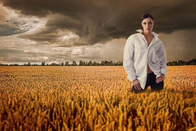 Женщина в белой рубашке в поле золотой рожи стоковое фото