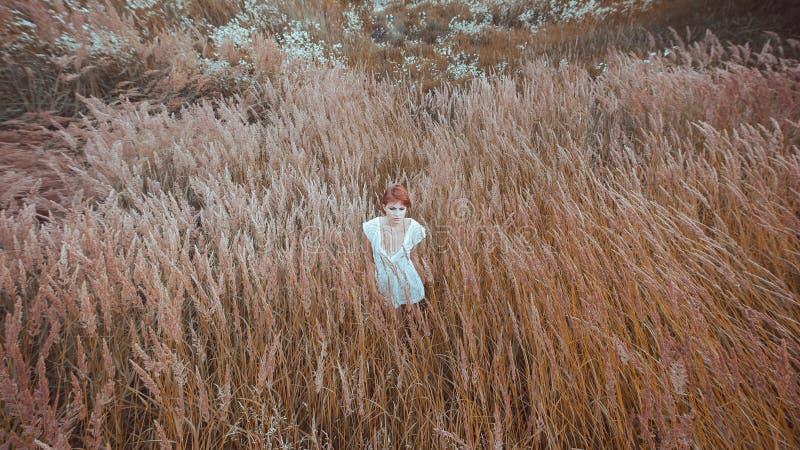Женщина в белом платье остается в поле стоковая фотография rf