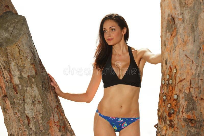 Женщина в бикини представляя деревьями стоковые изображения