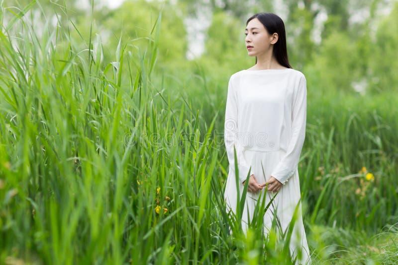 Женщина в более белом лете платья между тростником стоковые изображения rf