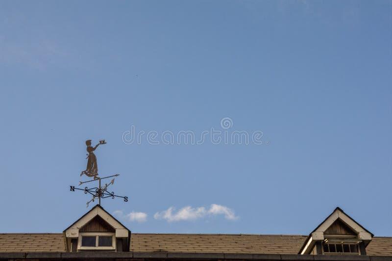 Женщина в ветре стоковые изображения rf