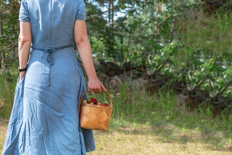 Женщина в голубом платье носит корзину со клубникой стоковое фото