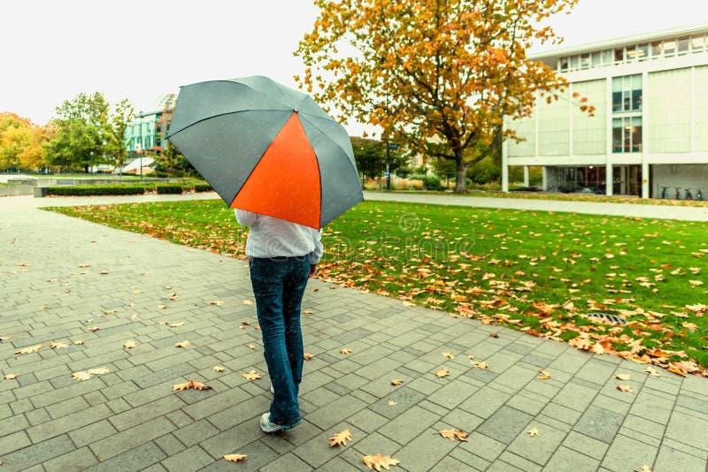 Женщина в джинсах идя с зонтиком в дожде в осени стоковое изображение rf