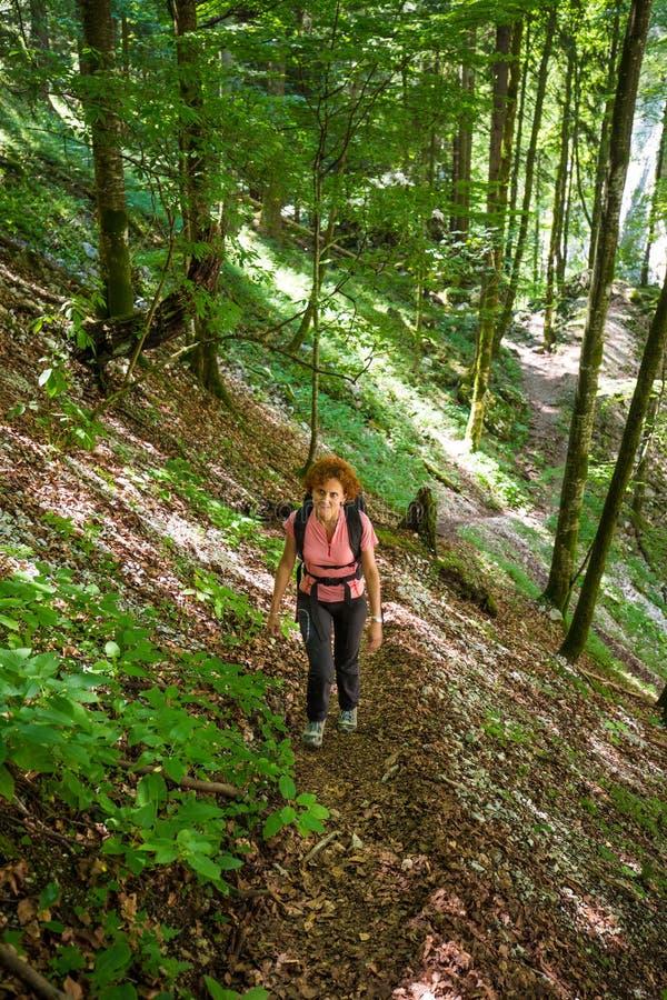 Женщина в лес стоковое изображение rf