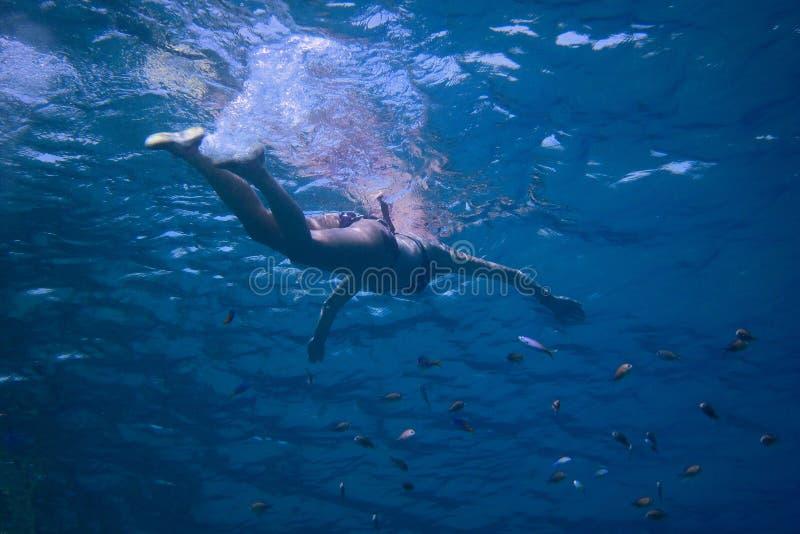 Женщина в заплывании бикини в море стоковое фото
