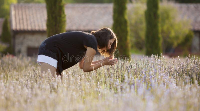 Женщина в поле лаванды стоковое изображение