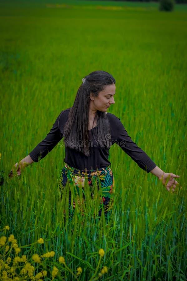 Женщина в поле weath стоковые изображения