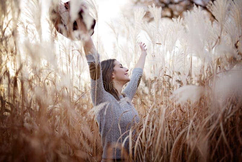 Женщина в пшеничном поле на заходе солнца стоковая фотография rf