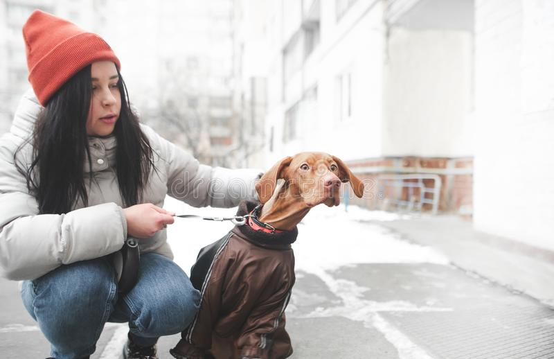 Женщина в теплых одеждах держит на поводке забавная собака удивила глаза смотря к стороне стоковые изображения rf