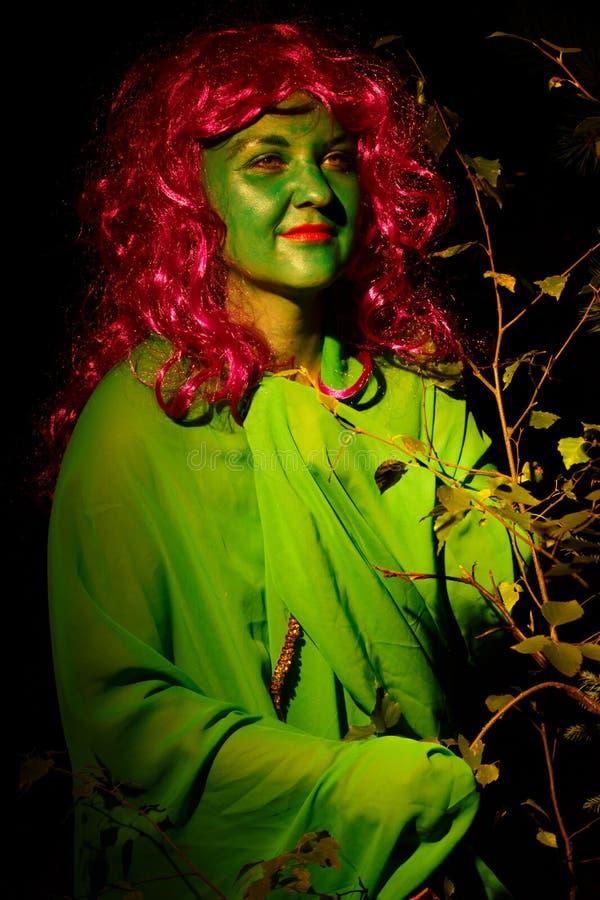 Женщина в форме ведьмы воды прячет в кустах Свет падает на сторону стоковые фотографии rf