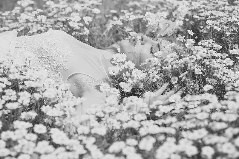 Женщина в camomiles стоковое изображение rf
