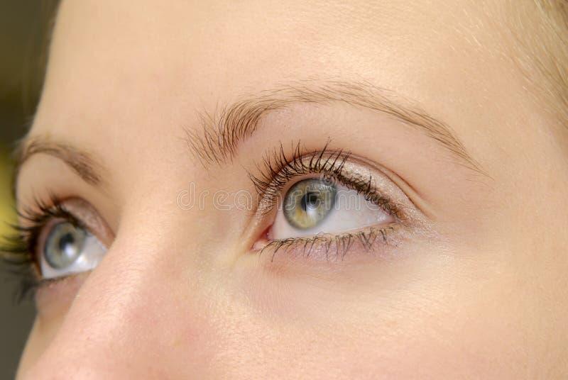 женщина глаза одного стоковое изображение rf