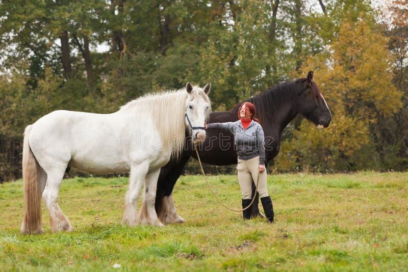 женщина графства 2 лошадей стоковое фото rf