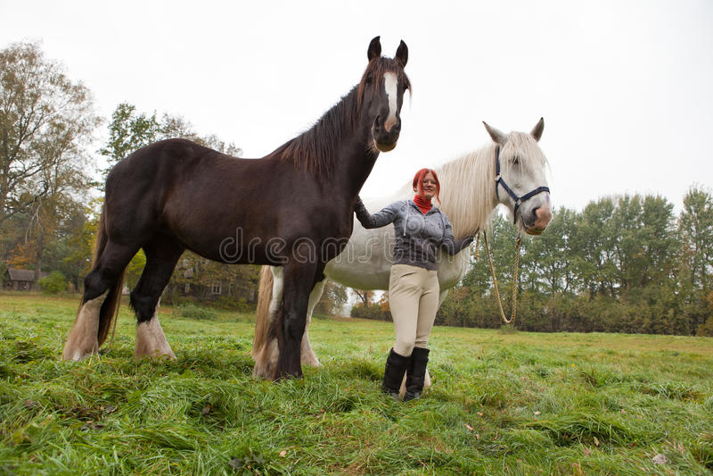 женщина графства 2 лошадей стоковое изображение rf