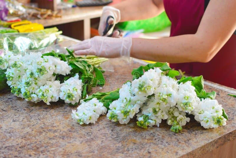 Женщина делая букет из цветков mattiola весны стоковое фото rf