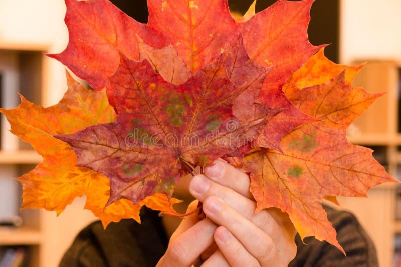 Женщина держа апельсин группы и листья красного цвета стоковые фото