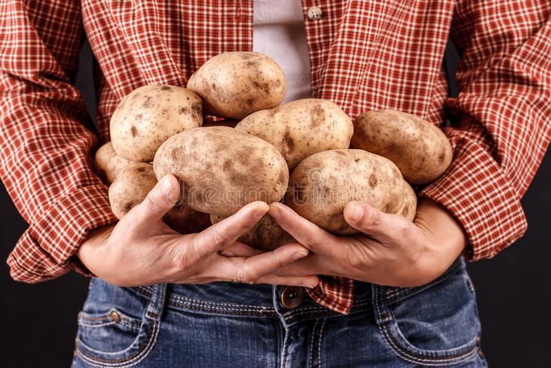 Женщина держа картошки в руках стоковое изображение
