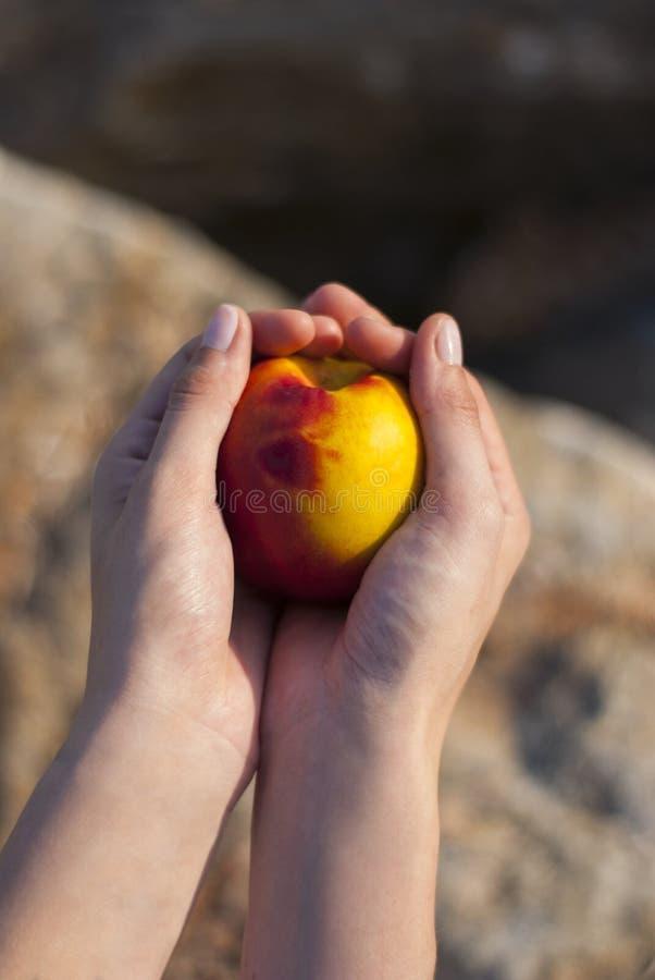Женщина держа персик стоковая фотография