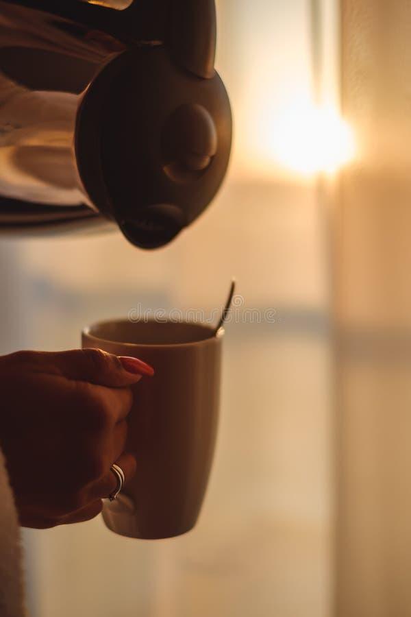 Женщина держа чайник над чашкой стоковое фото