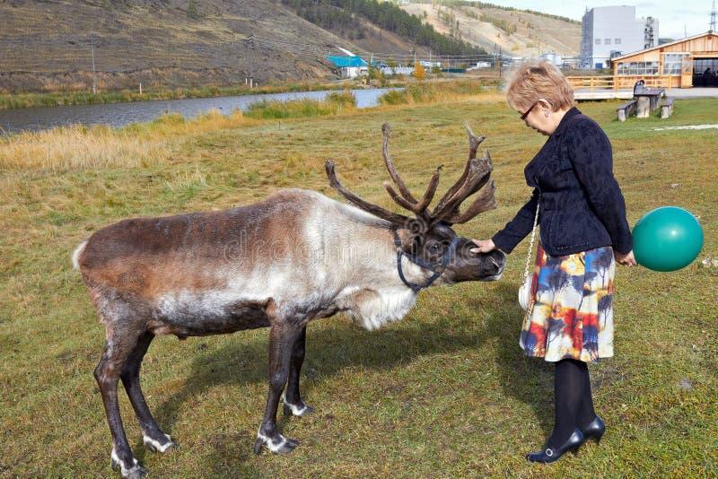 Женщина достигает вне ее руку к оленям стоковые фото