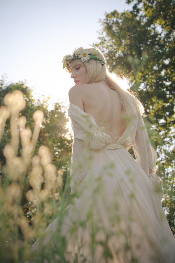 Женщина лета в траве стоковые фотографии rf