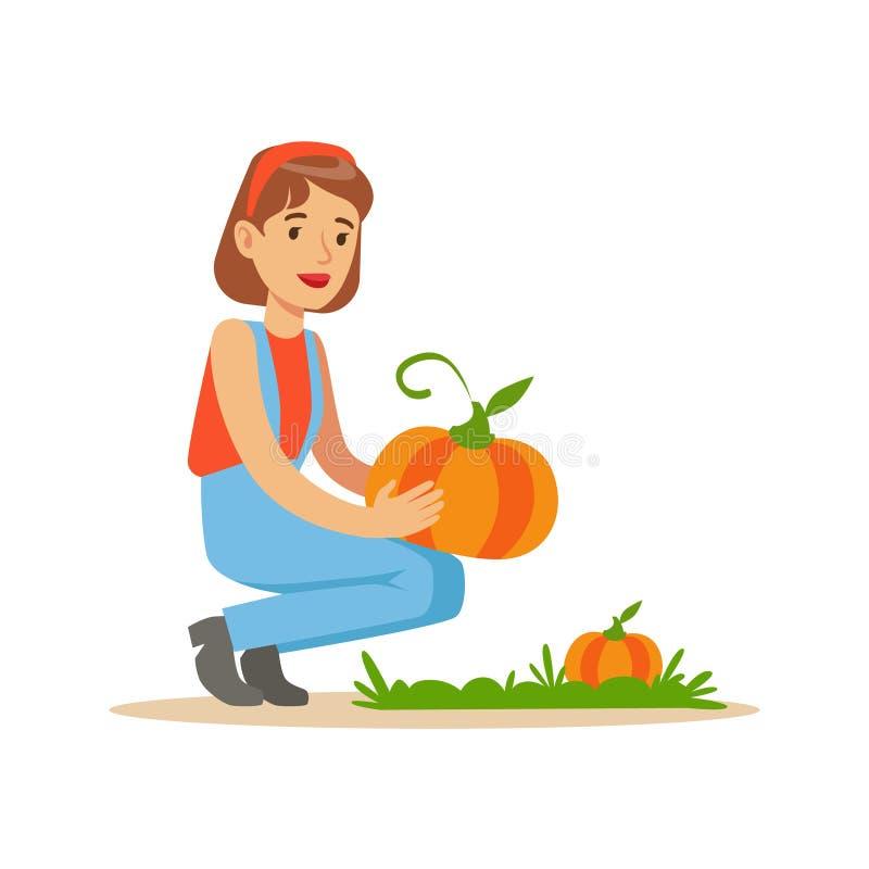 Женщина жать тыквы, фермера работая на ферме и продавая на естественном органическом товарном рынке бесплатная иллюстрация
