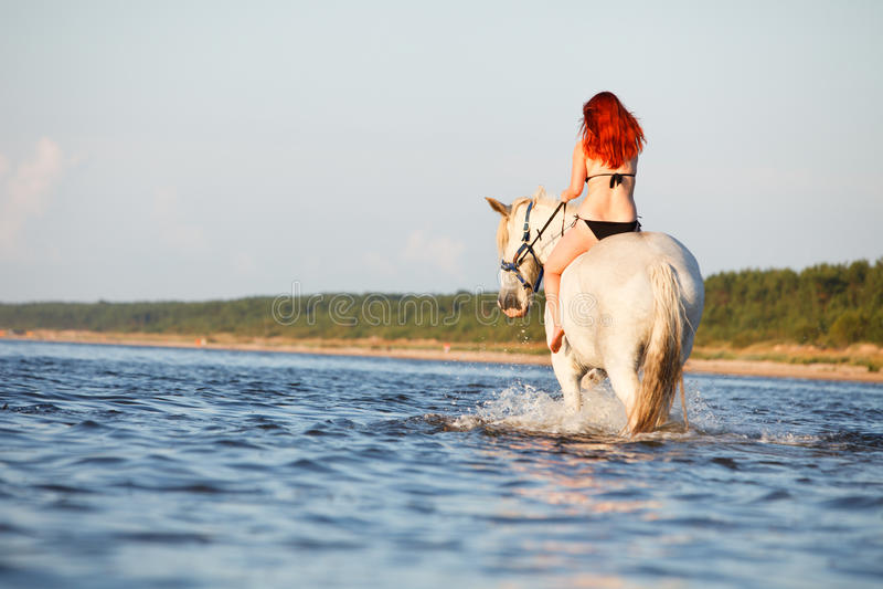 женщина заплывания лошади стоковое изображение