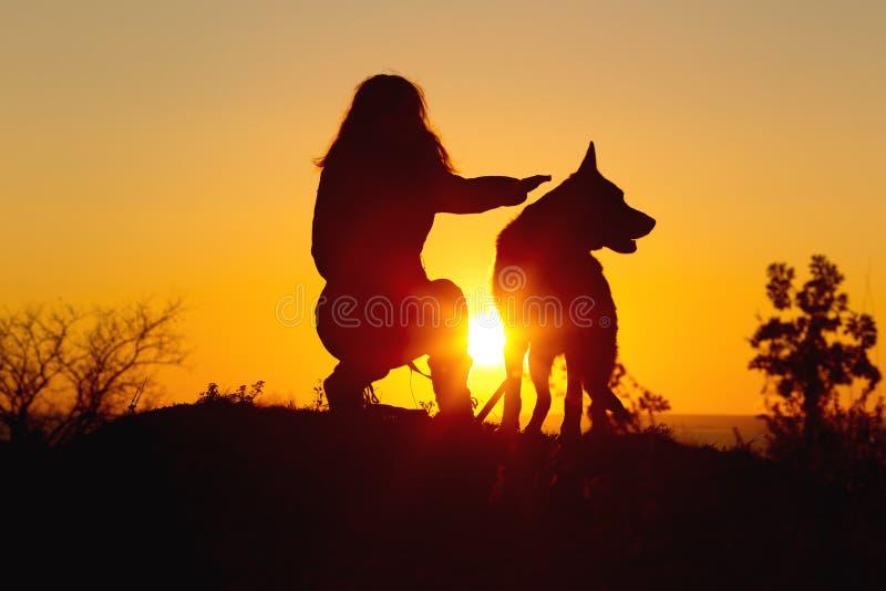 Женщина идя с собакой в поле на заходе солнца, девушка силуэта штрихуя любимца сидя рядом на natur, ярком солнечном свете между 2 стоковые фотографии rf