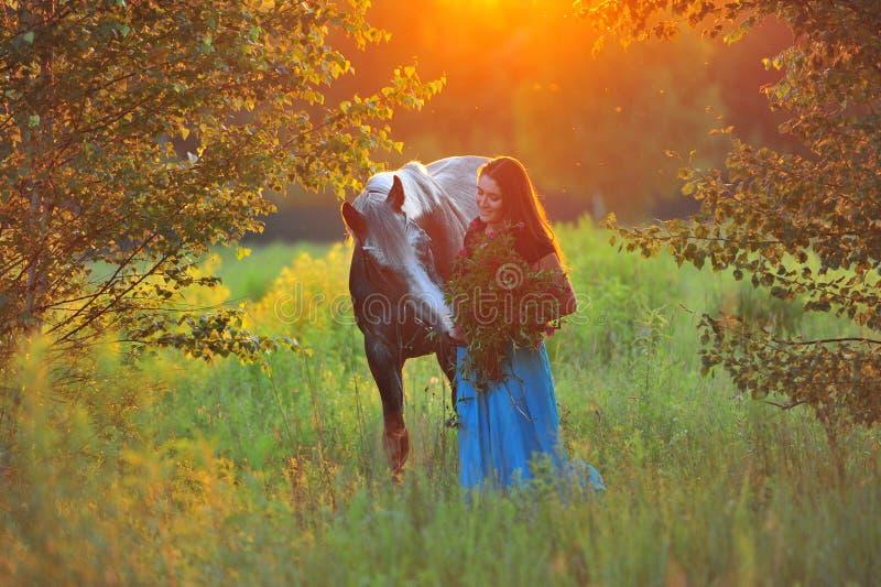 Женщина и серая лошадь в золотом свете стоковые изображения