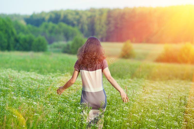 Download Женщина идя на луг стоковое изображение. изображение насчитывающей green - 41653277