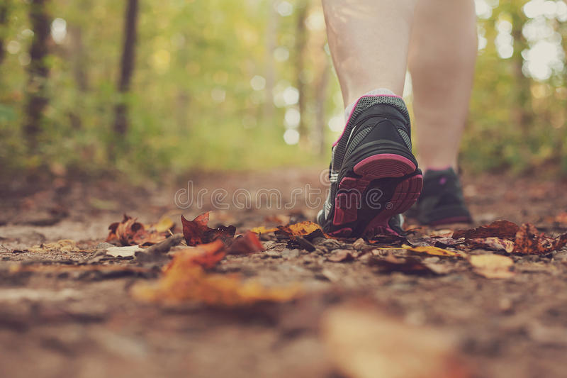 Женщина идя через лес. стоковые фото