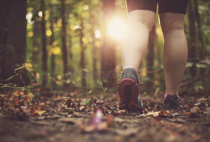 Женщина идя через лес стоковое изображение rf